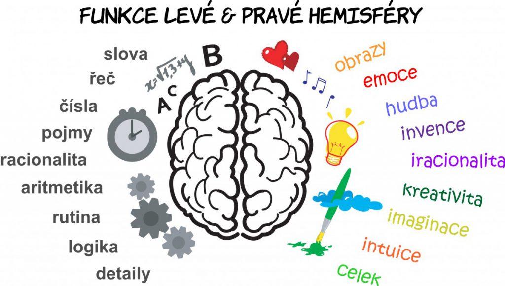 funkce-leve-a-prave-hemisfery